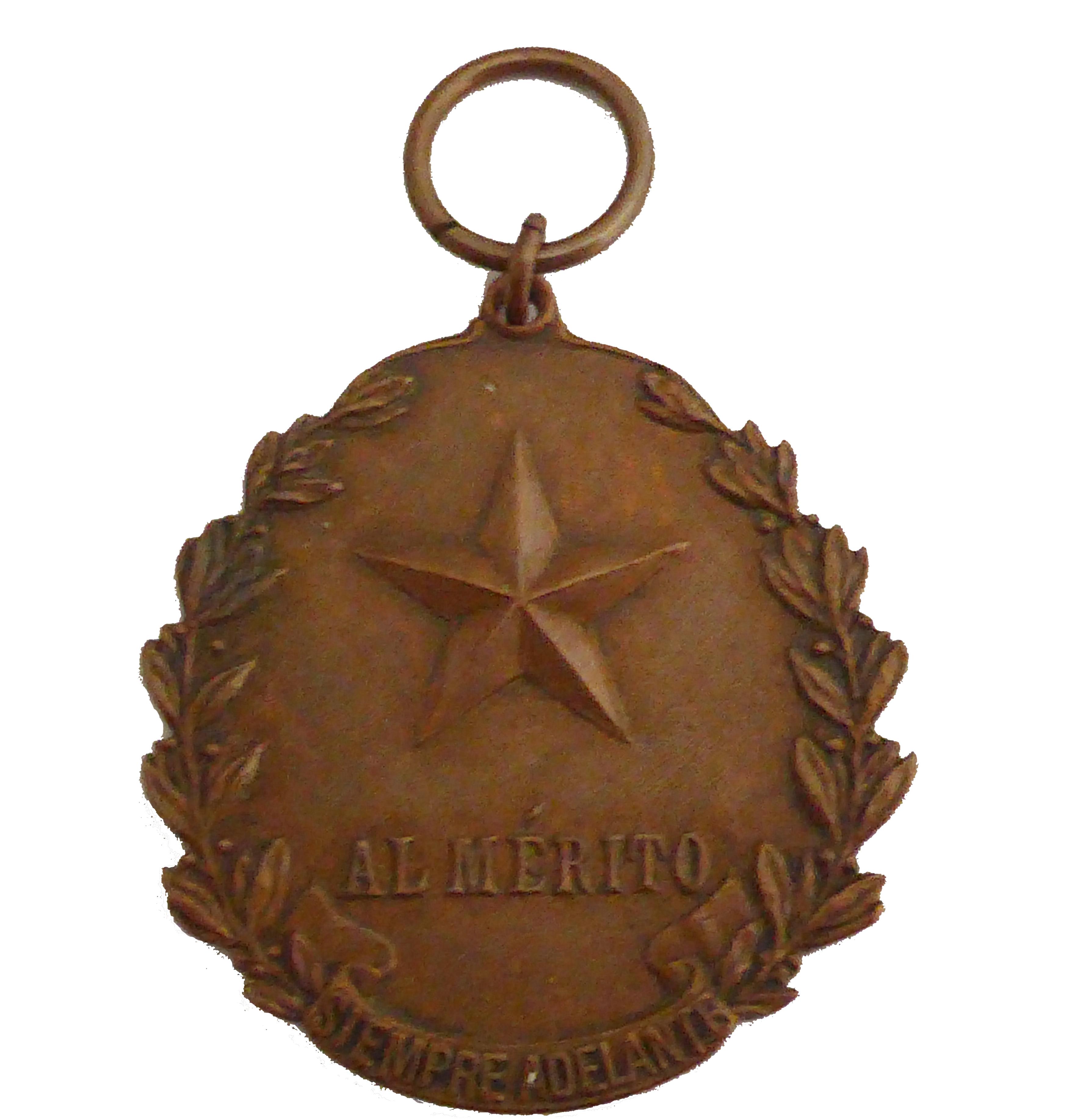 Medalla al Mérito - Bronce
