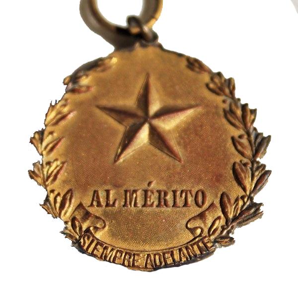 Medalla al Mérito - Oro