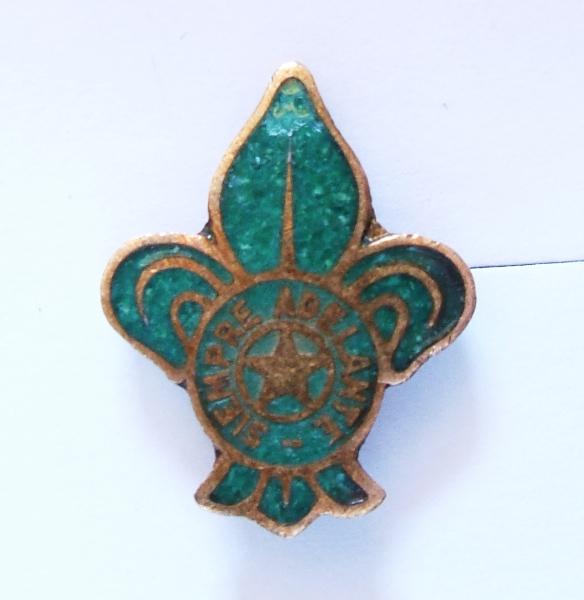 Pin Flor de Lis esmaltado en verde