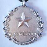 Medalla al Mérito - Plata