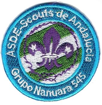 Grupo Scout 545