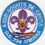 Grupo Scout 238