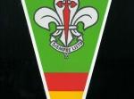Banderín Scouts de España