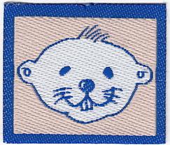 1990 Distintivo Progresión Castores