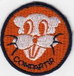 1990 Distintivo Rama Castores