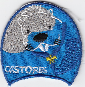 2006 Distintivo Progresión Castores