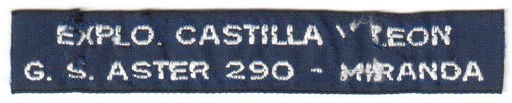 Grupo Scout 290