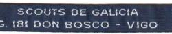 Grupo Scout 181
