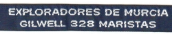Grupo Scout 328