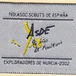 2002 Distintivo de Asociado a ExMu